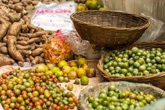 Manden met diverse vruchten en groenten worden gevuld die Royalty-vrije Stock Foto