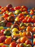 Manden van erfgoedtomaten bij de markt van landbouwers stock afbeeldingen