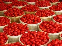Manden van tomaten stock fotografie