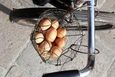 mandhoogtepunt van verse eierenkip Royalty-vrije Stock Foto