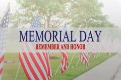 Mandi un sms a Memorial Day e onori sulla fila delle bandiere americane del prato inglese fotografia stock