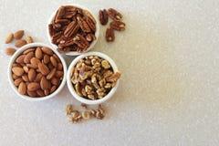 Mandlar, pecannötter och valnötter i behållare, placerat vänstert Royaltyfri Fotografi