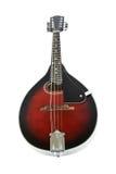 mandolin Royaltyfria Foton