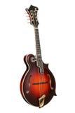 mandolin Стоковая Фотография