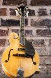 mandolin Royaltyfri Fotografi