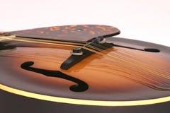 mandolin Arkivfoto