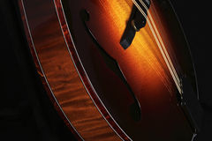 Mandolin  on black, detail Stock Images