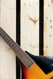 Mandolin concept Royalty Free Stock Images