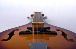 Mandolin detail on white background Royalty Free Stock Images