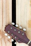 Mandolin headstock background Stock Images