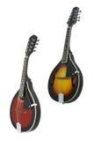Mandolin Royalty Free Stock Photo