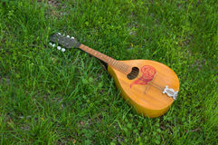 Mandolin lost in spring grass Royalty Free Stock Images