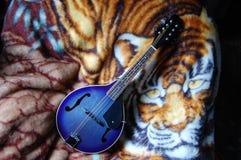 Mandolina azul con el tigre imagen de archivo