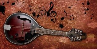 mandoline Arkivbild