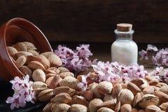 mandorle, fiori della mandorla e latte della mandorla immagine stock
