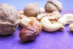 Mandorle, nocciole, anacardi ed intere noci su fondo blu e porpora Spuntino organico sano, prima colazione, alimento fotografia stock libera da diritti