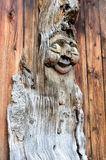 Mandrake. Carved from a burl wood figure against a dark brown background of wooden boards Stock Image