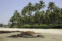 Mandrem Beach Goa. India, deserted beach on a hot sunny day Stock Photo
