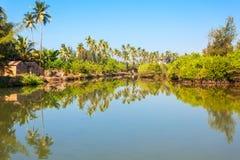 Mandrem beach Goa India Royalty Free Stock Image