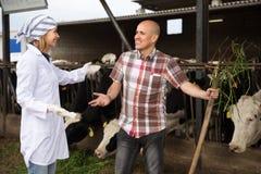 Mandriano professionista e medico che parlano nel granaio del bestiame Fotografie Stock