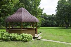 Mandril de madeira Foto de Stock Royalty Free
