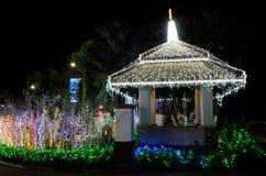 Mandril decorado com lotes de luzes de Natal Ilumina??o decorativa noite imagem de stock