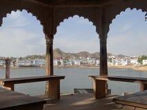 Mandril do leste no lago em Pushkar Imagens de Stock Royalty Free