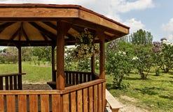 Mandril em um jardim. imagens de stock royalty free