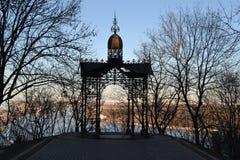 Mandril forjado em essa da plataforma de observação a mais popular no parque de Volodymyrska Gorka foto de stock royalty free