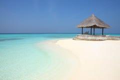 Mandril na praia de Maldivas foto de stock