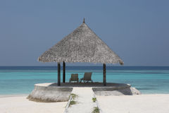 Mandril na praia de Maldivas Fotos de Stock