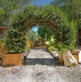 Mandril natural, arcada, treliça Fotografia de Stock Royalty Free