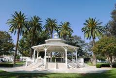 Mandril no parque da cidade do templo imagens de stock royalty free