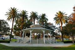 Mandril no parque da cidade do templo foto de stock royalty free