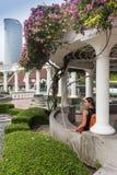 Mandril no parque outonal ajardinar Imagem de Stock
