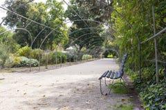 Mandril quadro metal, Adelaide Botanic Garden imagens de stock