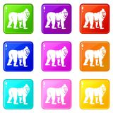 Mandrill monkey icons 9 set. Mandrill monkey icons of 9 color set isolated vector illustration Stock Photography