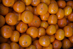 Mandrin Oranges Stock Photography