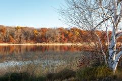 Mandy湖在秋天 库存照片