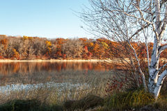 Mandy Lake in Autumn Stock Photos