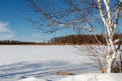 Mandy Lake in Winter. This is a landscape view of a frozen Mandy Lake located in the Rice Lake National Wildlife Refuge near McGregor, Minnesota Stock Photos