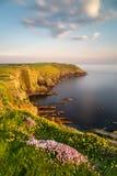 Maneira atlântica selvagem no por do sol Imagem de Stock