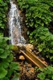 Maneira da água Fotografia de Stock Royalty Free