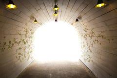 Maneira da caminhada à luz Imagem de Stock