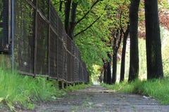 Maneira da caminhada da borda da estrada em Bielsko-Biala Imagens de Stock Royalty Free