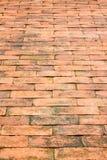 Maneira da caminhada do tijolo no jardim como o fundo Foto de Stock Royalty Free