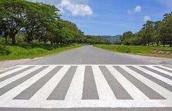 Maneira da caminhada do tráfego da zebra, maneira transversal Fotos de Stock