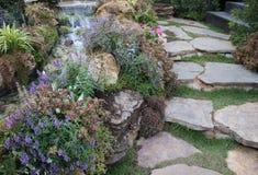 Maneira da caminhada no jardim bonito com cachoeira pequena Imagens de Stock Royalty Free