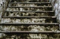 Maneira da escada ao palácio grande fotografia de stock