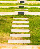 Maneira da escada no jardim verde, foco seleto Fotografia de Stock